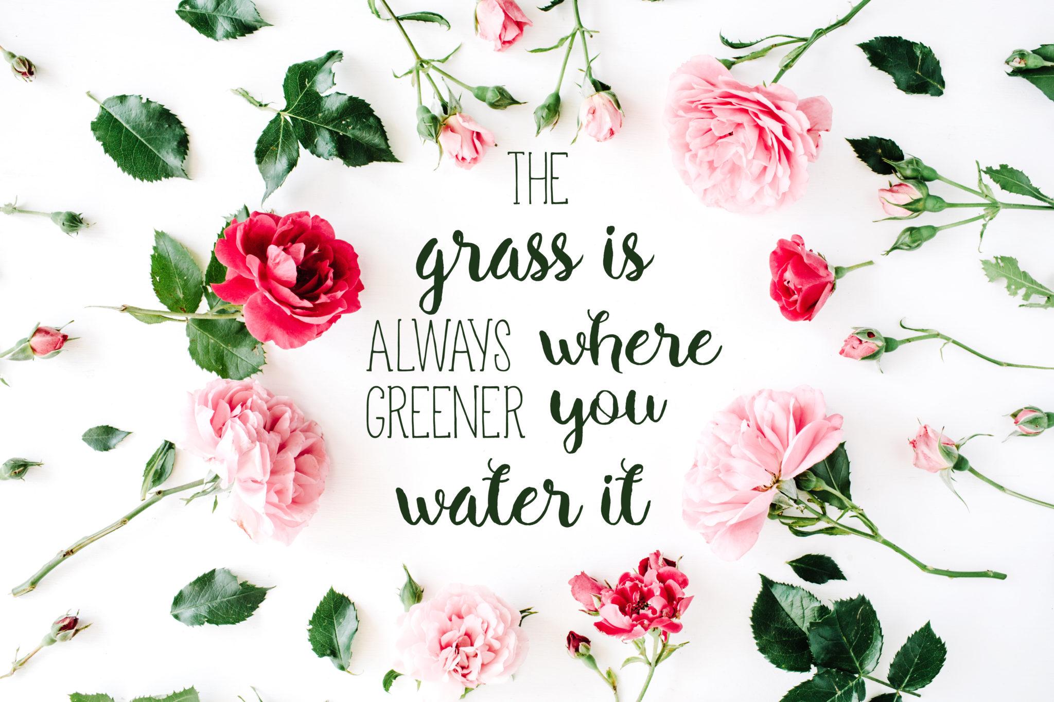 Grass-WALLPAPER